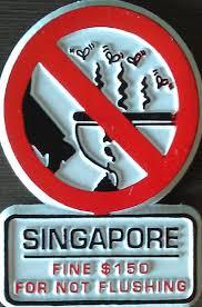 Singapore - no flushing