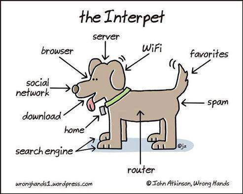 The Interpet - dog